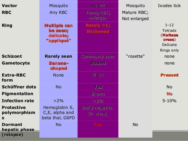 ovaleovale VectorVector MosquitoMosquito MosquitoMosquito MosquitoMosquito Ixodes tickIxodes tick RBCRBC Any RBCAny RBC Yo...