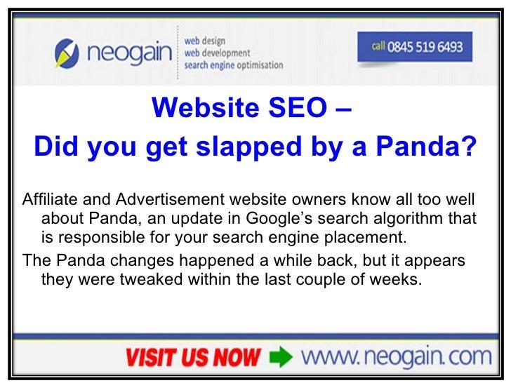 <ul><li>Website SEO –  </li></ul><ul><li>Did you get slapped by a Panda? </li></ul><ul><li>Affiliate and Advertisement web...