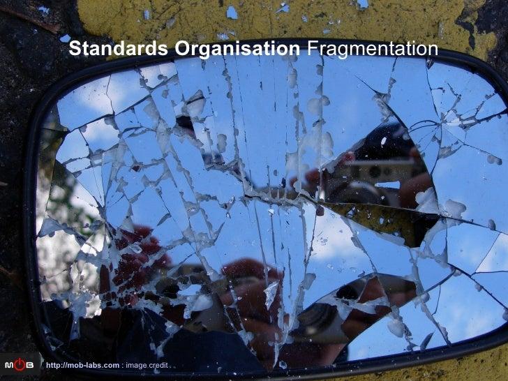Standards Organisation  Fragmentation http://mob-labs.com  :  image credit