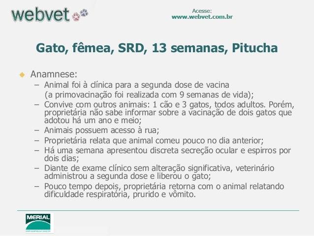  Anamnese: – Animal foi à clínica para a segunda dose de vacina (a primovacinação foi realizada com 9 semanas de vida); –...