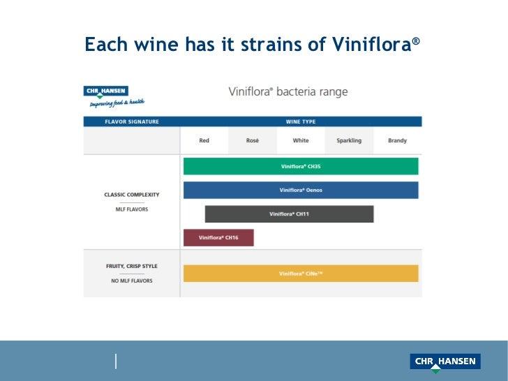 Each wine has it strains of Viniflora ®