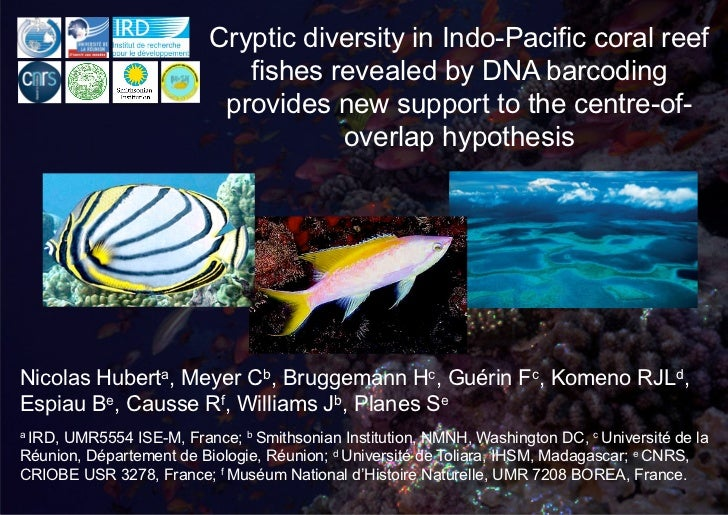 Cryptic diversity in Indo-Pacific coral reef                            fishes revealed by DNA barcoding                  ...