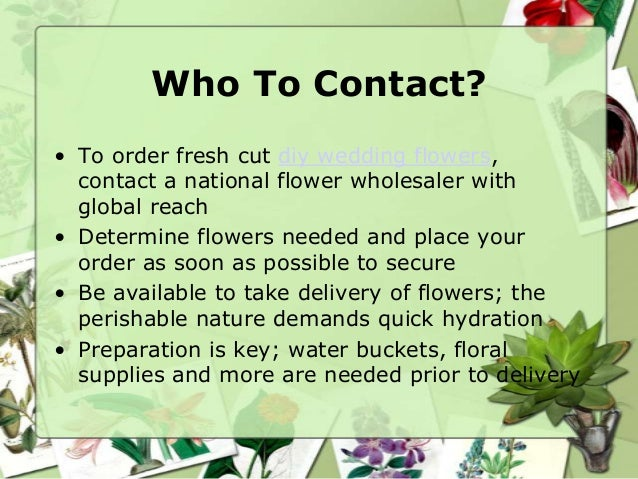 Who To Contact?• To order fresh cut diy wedding flowers,  contact a national flower wholesaler with  global reach• Determi...