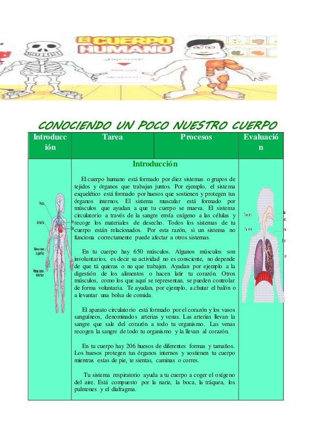 CONOCIENDO UN POCO NUESTRO CUERPO Introducc ión Tarea Procesos Evaluació n Introducción El cuerpo humano está formado por ...