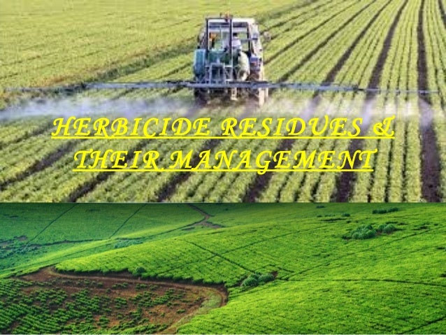 HERBICIDE RESIDUES &  THEIR MANAGEMENT