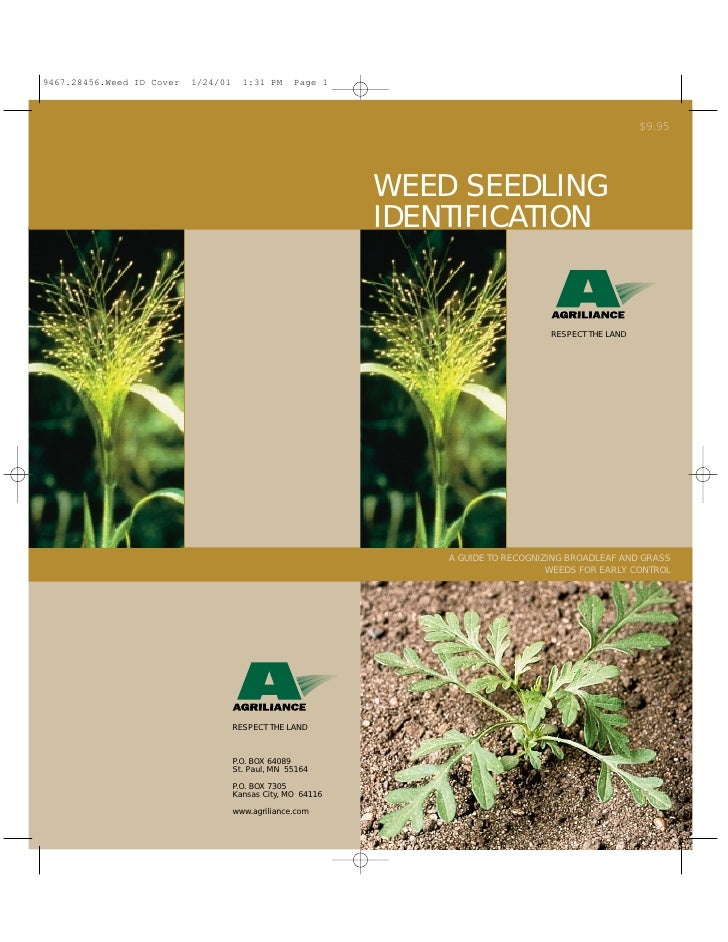 $9.95     WEED SEEDLING IDENTIFICATION                          RESPECT THE LAND         A GUIDE TO RECOGNIZING BROADLEAF ...