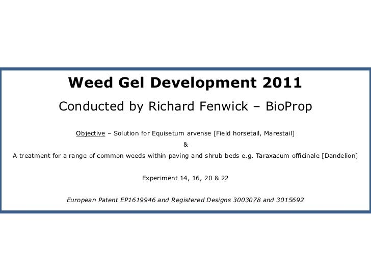Weed Gel Development 2011 <br />Conducted by Richard Fenwick – BioProp<br />Objective – Solution for Equisetum arvense [Fi...