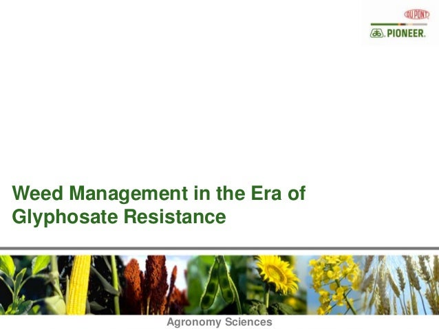 Weed Management in the Era ofGlyphosate Resistance                  Agronomy Sciences               Agronomy Sciences