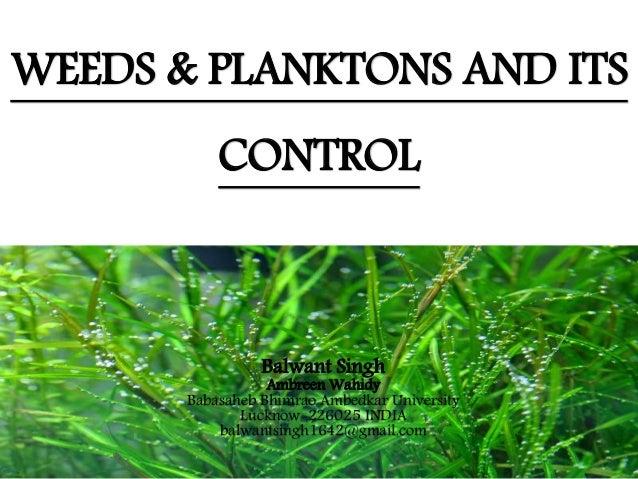 WEEDS & PLANKTONS AND ITS CONTROL Balwant Singh Ambreen Wahidy Babasaheb Bhimrao Ambedkar University Lucknow-226025 INDIA ...