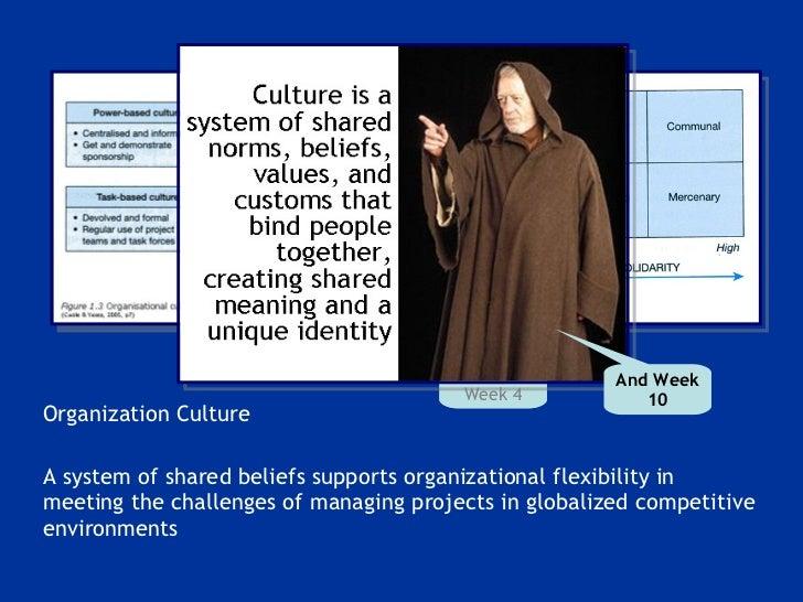<ul><li>Organization Culture </li></ul><ul><li>A system of shared beliefs supports organizational flexibility in meeting t...