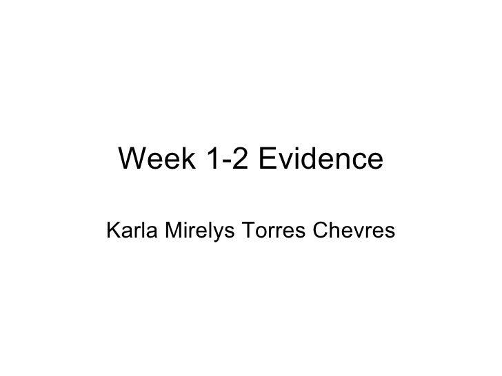 Week 1-2 Evidence Karla Mirelys Torres Chevres