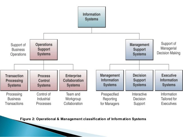 Management Information System Types