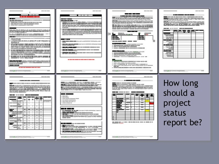 The Project Management Process Week 9 Performance Management – Project Management Report