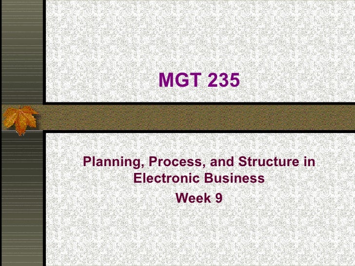 MGT 235 Planning, Process, and Structure in Electronic Business Week 9