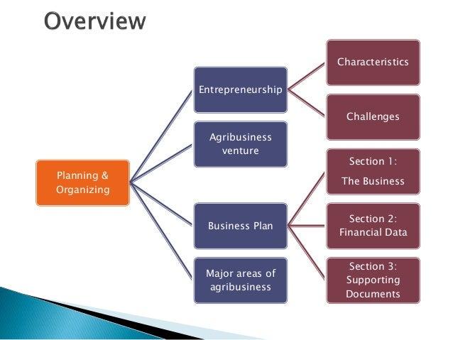 ag business plan