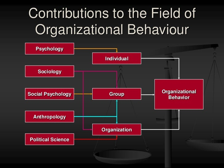 chapter 1 introduction to organizational behavior Chapter 1 organizational behaviour 1 prof rajasshrie pillai 2 chapter  content: introduction to organizational behaviour: definition,.