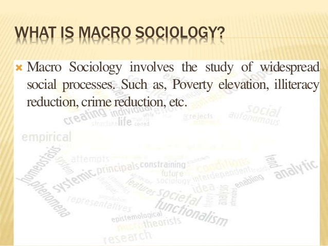 Micro-sociology | Definition of Micro-sociology by Merriam ...