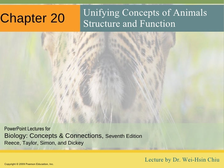 Chapter 20 <ul><li>Unifying Concepts of Animals Structure and Function </li></ul>Copyright © 2009 Pearson Education, Inc. ...