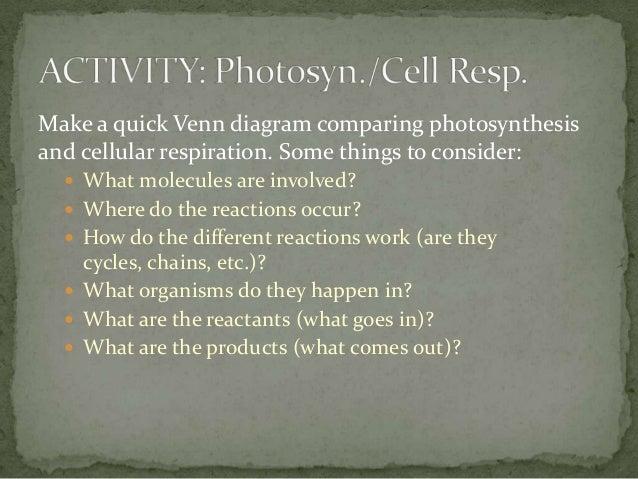 Ap Biology Week 3 Cell Energy