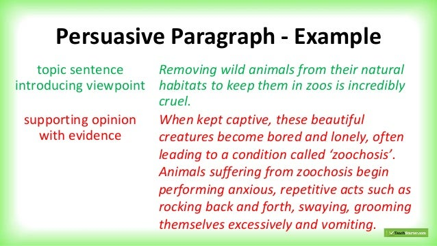 Week 5 Imaginative-persuasive-and-informative-paragraphs