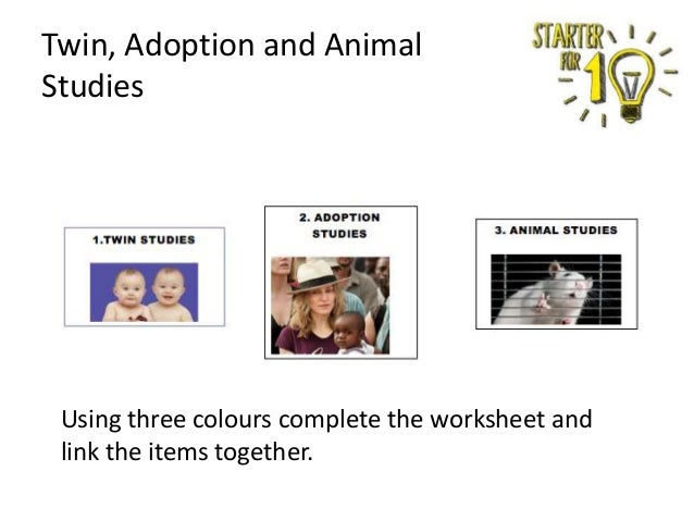 Twin, Adoption and Animal Studies  Using three colours complete the worksheet and link the items together.