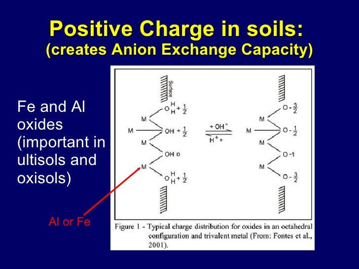 ANION EXCHANGE CAPACITY OF SOIL PDF DOWNLOAD