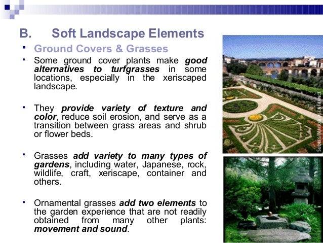 18. B. Soft Landscape ...