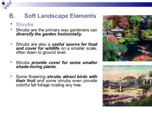 B. Soft Landscape Elements  Shrubs  Shrubs are the primary way gardeners can diversify the garden horizontally.  Shrubs...