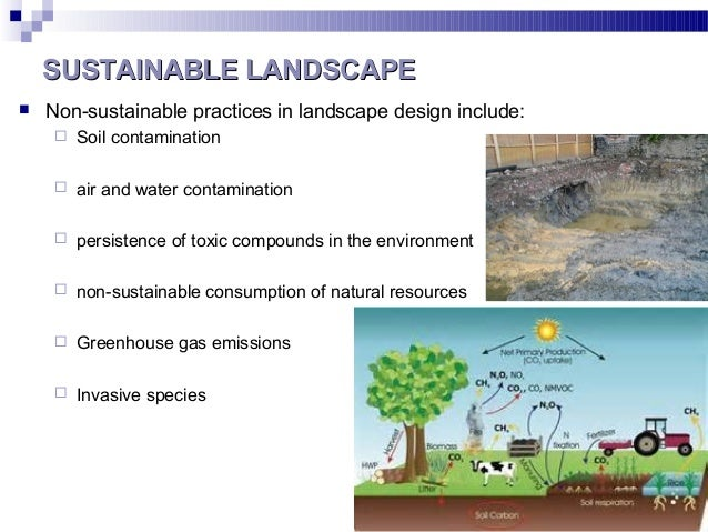 SUSTAINABLE LANDSCAPESUSTAINABLE LANDSCAPE  Non-sustainable practices in landscape design include:  Soil contamination ...