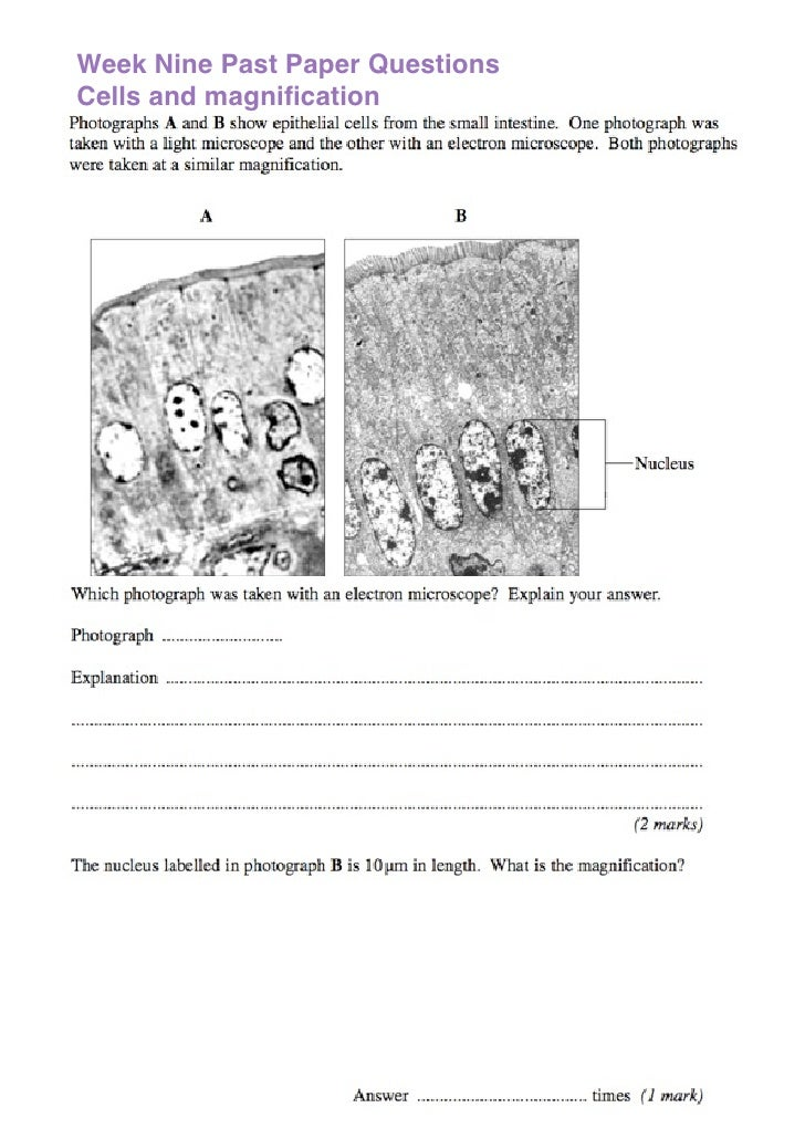 Week Nine Past Paper Questions Cells and magnification