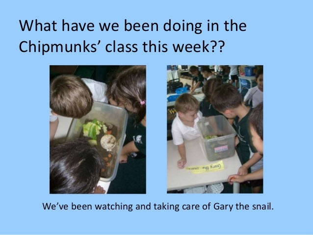What have we been doing in the Chipmunks' class this week?? We've been watching and taking care of Gary the snail.