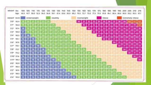 Pregnancy Weight Gain Diagram Block And Schematic Diagrams