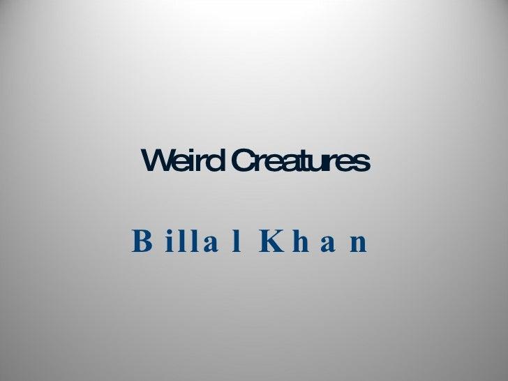 Weird   Creatures Billal Khan