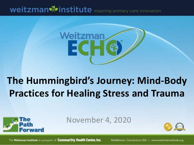 The Hummingbird's Journey: Mind-Body Practices for Healing Stress and Trauma November 4, 2020