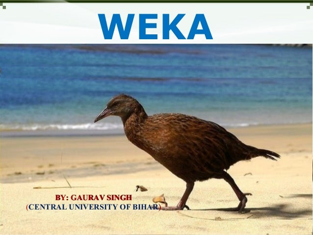WEKABY: GAURAV SINGHBY: GAURAV SINGH(CENTRAL UNIVERSITY OF BIHAR))