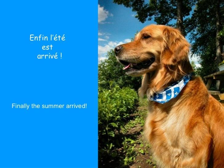 Enfin l'été  est  arrivé ! Finally the summer arrived!