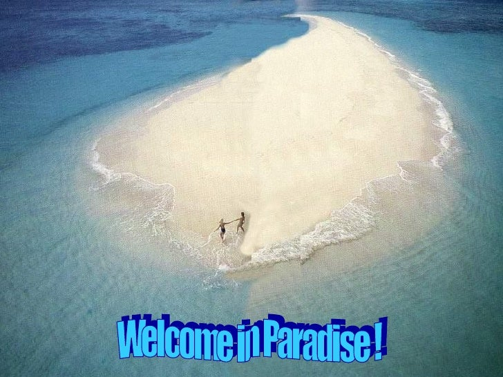 Welcome in Paradise !