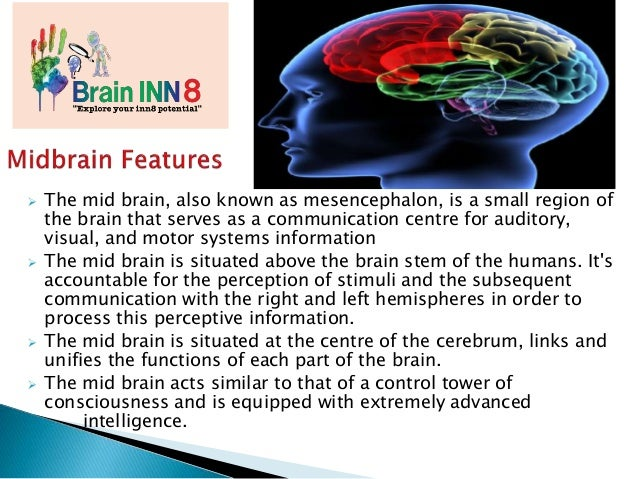  The mid brain, also known as mesencephalon, is a small region of the brain that serves as a communication centre for aud...