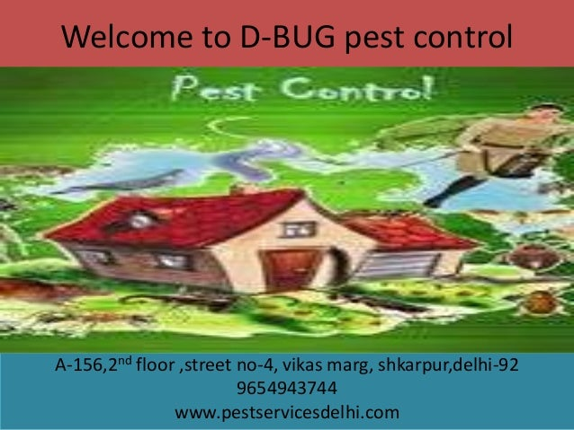 Welcome to D-BUG pest control  A-156,2nd floor ,street no-4, vikas marg, shkarpur,delhi-92 9654943744 www.pestservicesdelh...