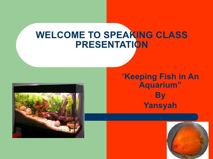 "WELCOME TO SPEAKING CLASS PRESENTATION "" Keeping Fish in An Aquarium"" By Yansyah"