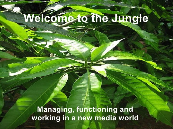 Welcome to the Jungle Managing, functioning and working in a new media world