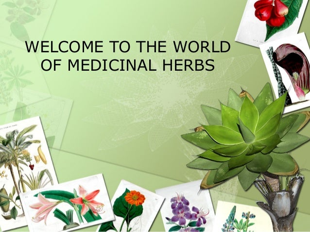 WELCOME TO THE WORLDOF MEDICINAL HERBS