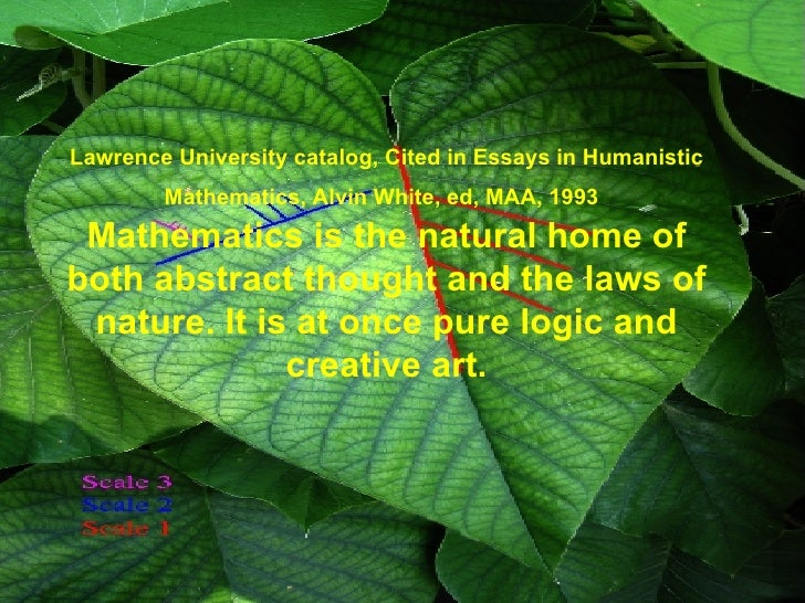 Maths In Nature Essay Sample - image 5