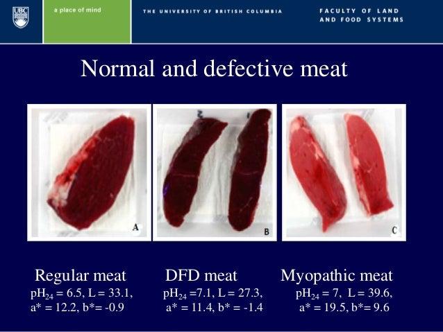 dfd meat