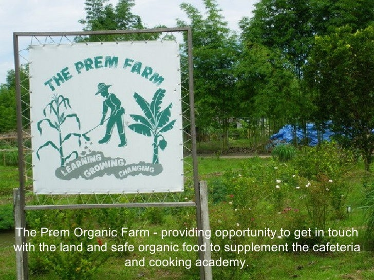 The Prem Organic Farm - providing opportunity to get in touch with the land and safe organic food to supplement the cafete...