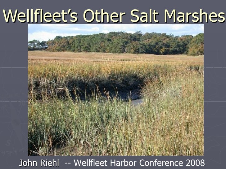 Wellfleet's Other Salt Marshes John Riehl   -- Wellfleet Harbor Conference 2008