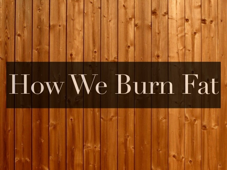 How We Burn Fat