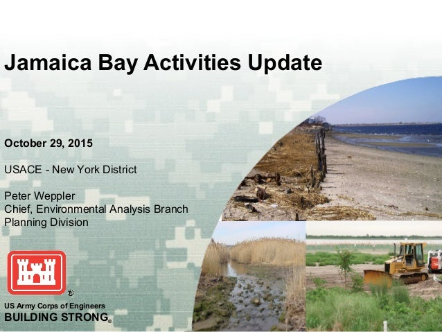 US Army Corps of Engineers BUILDING STRONG® October 29, 2015 USACE - New York District Peter Weppler Chief, Environmental ...