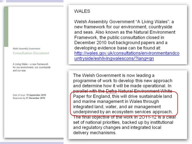 HMMA Environmental Policy