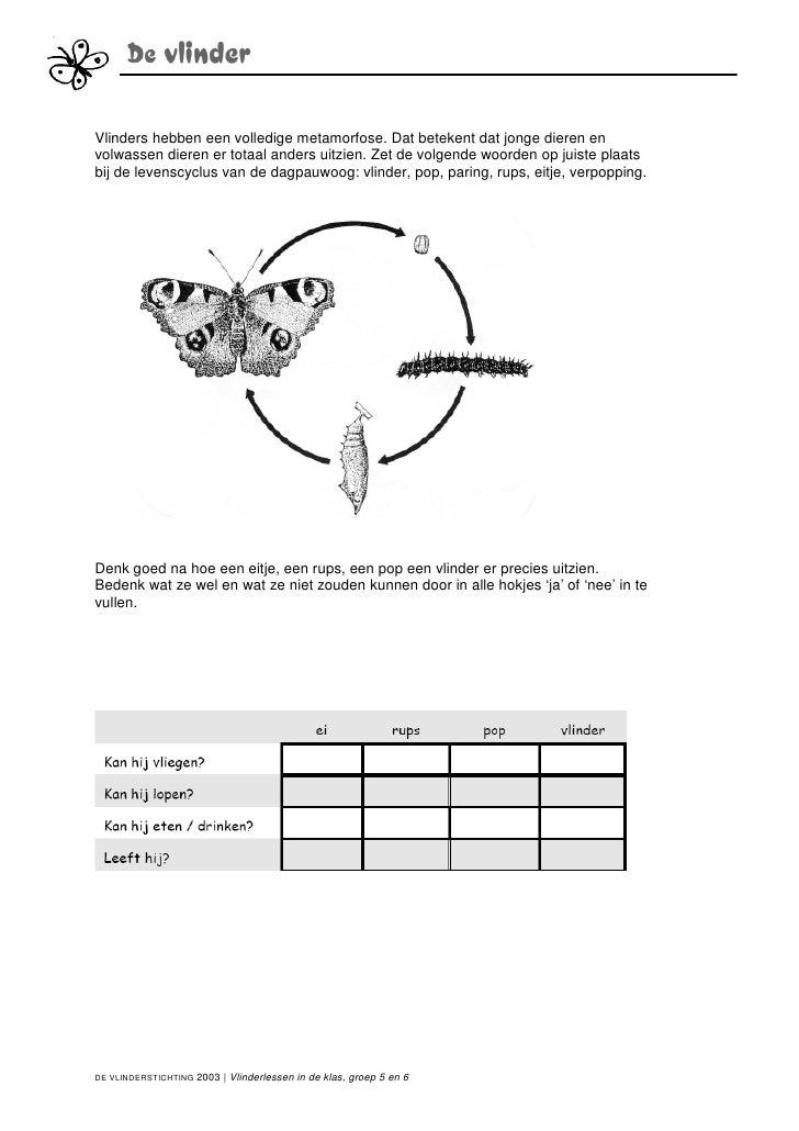 Volwassen Kleurplaten Kerst Gr 5 6 Werkblad Vlinders